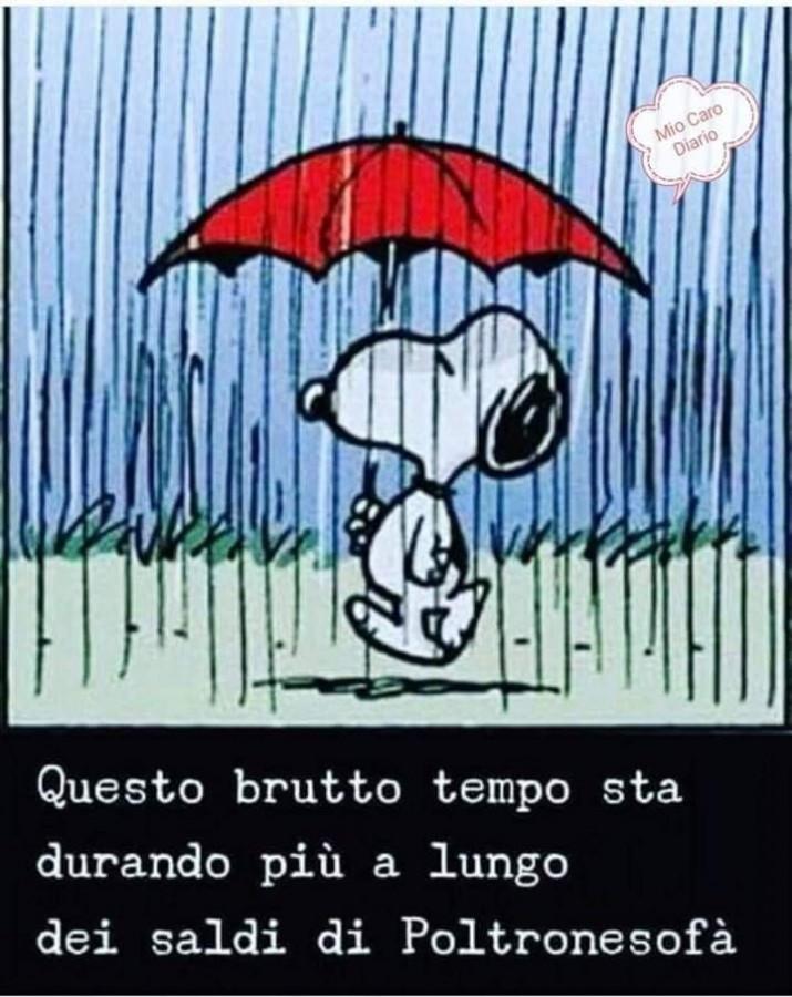 E Giàiniziano Questa Splendida Giornata Di Pioggia